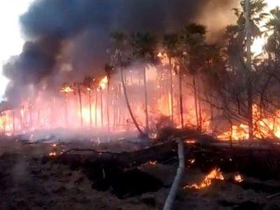 Chispeo del tendido eléctrico provocó incendio en Atyrá