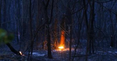 La Nación / Todavía no se conoce la cantidad de bosques afectados por incendios