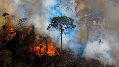 HOY / Los incendios se disparan en la Amazonía y Pantanal brasileño