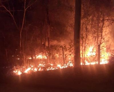 Concepción: Incendio en el predio de la Escuela Agrícola