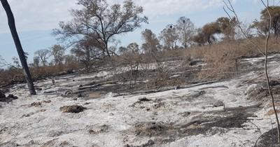 La Nación / Alto Paraguay: Fiscalía imputa a propietario de establecimiento por Delitos contra el Medio Ambiente