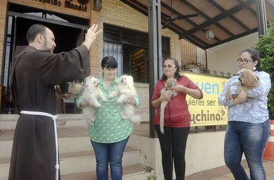 Habrá misa y bendición de mascotas