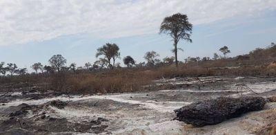 Imputan a propietarios de fincas por quemas forestales