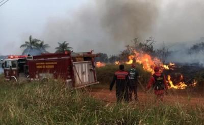 Tres muertos a causa de incendios forestales en distintos municipios