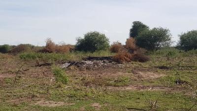 Varios imputados por Delitos ambientales