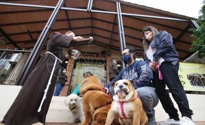 HOY / Bendicen a mascotas por el Día de Francisco de Asís