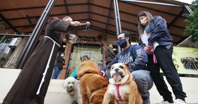 La Nación / Día del Animal: capuchinos bendicen a mascotas para llenar de amor a sus familias