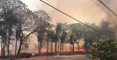 Capitán de bomberos se ratifica: El 90% de los incendios son provocados