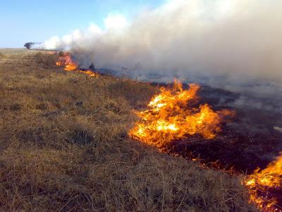 Al quemar parcelas se pierden 30 años de inversión