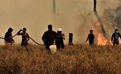 Realizan operativo de rescate de animales afectados por incendios