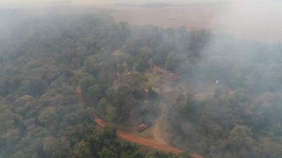 Iniciarán tareas para la restauración de las áreas protegidas afectadas por incendios