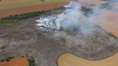 """Mades anuncia """"recopilación"""" de datos para """"restauración ecológica"""" tras incendios"""