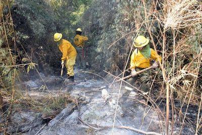 Siguen los incendios en el Parque Caazapá