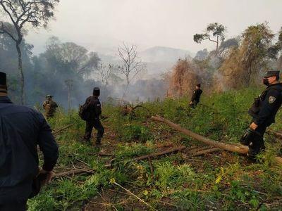 Destruyen cultivos de marihuana en San Rafael del Paraná