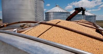 La Nación / Exviceministro de Agricultura asegura que sequía no es efecto de los sojales
