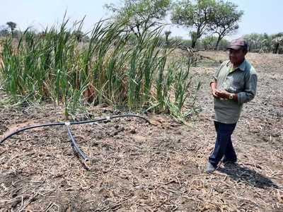 Comunidad indígena del Chaco encuentra agua dulce en plena sequía