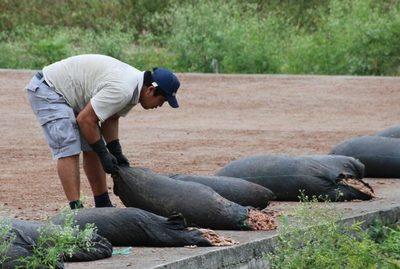Arranca en Ecuador un proyecto de matriz exportadora de gigante suizo del cacao