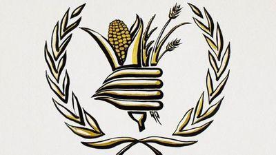 Programa Mundial de Alimentos de la ONU obtiene el Premio Nobel de la Paz