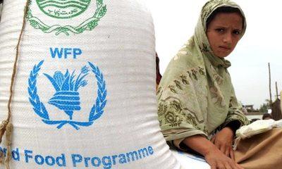 Programa Mundial de Alimentos se lleva el Premio Nobel de la Paz 2020