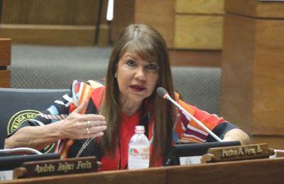 """Villamayor sobre caso de diputada: """"Tiene derecho a opinar y no puede ser molestada por eso"""""""