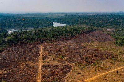 Deforestación en Amazonía brasileña supera 7.000 km2 hasta septiembre