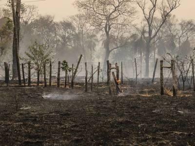 AFD dispone de G. 150.000 millones para productores afectados por los incendios
