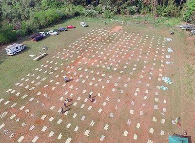 Paraguayo detenido en operativo en Misiones