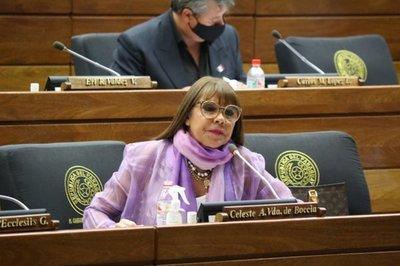 """Diputados denunciarán el """"quiebre institucional"""" de la Cámara Baja ante la Unión Europea y la Embajada de EE.UU."""