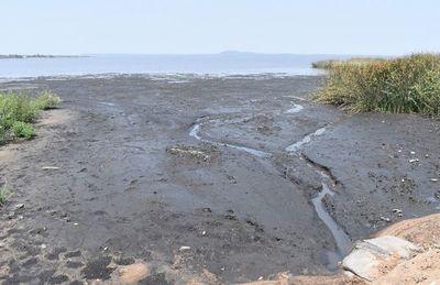 Humedales del lago Ypacaraí y el río Salado están en una situación crítica