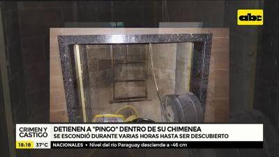 Detienen a Pingo dentro de una chimenea
