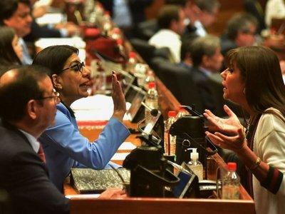 Los diputados analizan  revocatoria de suspensión a Celeste Amarilla