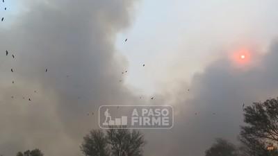 El Chaco y el trabajo en el combate contra incendios