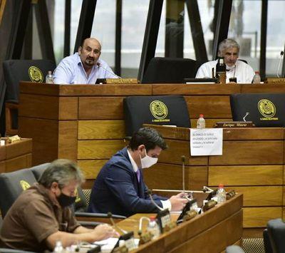 Colorados y liberales llanocartistas se mantienen y queda firme sanción contra diputada Amarilla