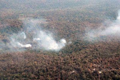 Parque Caazapá: Bomberos dejan la reserva forestal por falta de seguridad
