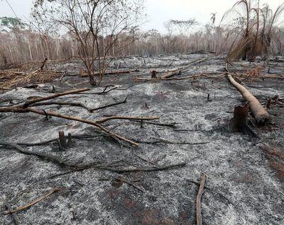 Incendios en Bolivia no paran y arrasan con 1,5 millones de hectáreas