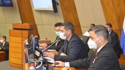 Diputados ratifican violación a la Constitución Nacional