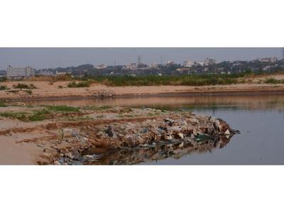 Deforestación e incendio  contribuyen a agudizar   la sequía, asevera experto