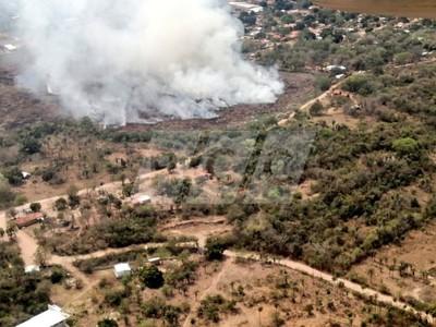 Proyectan reforestar terrenos afectados por incendios