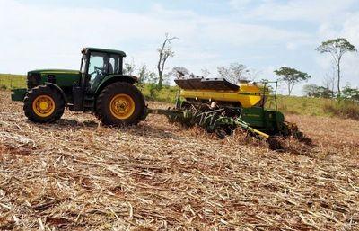 Algunos agricultores ya sembraron soja y esperan la llegada de las lluvias