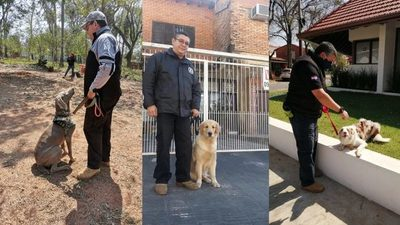"""""""No es imponer una ley al perro, uno debe amar lo que hace"""""""