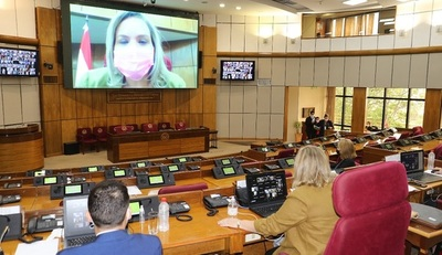 Amplio debate del proyecto que modifica la ley del escalafón diplomático y consular