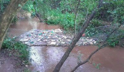 «Nos sirve para dimensionar el daño causado al medio ambiente»