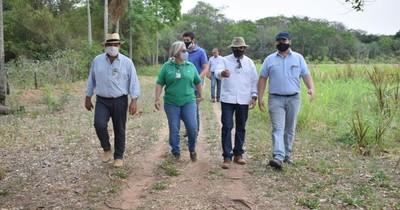 La Nación / Verifican ejecución de proyectos productivos en Misiones