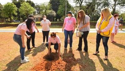 """En Caazapá realizaron caravana y plantaron árboles en conmemoración de """"Octubre Rosa"""""""