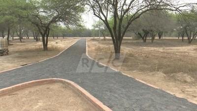 Neuland: Obras están paradas por falta de cemento