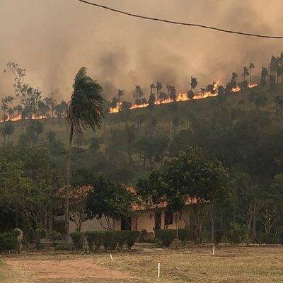 De 10 mil al inicio de octubre, Paraguay pasó a registrar solo 13 focos de calor