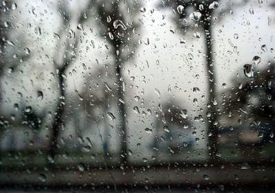 La Niña no afectaría al Chaco y las lluvias serían normales para noviembre y diciembre