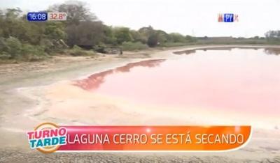 Laguna Cerro está a punto de desaparecer ante pasividad de autoridades
