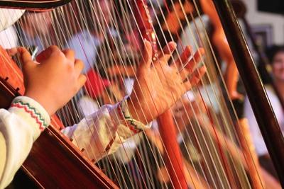 13.º edición del Festival Mundial del Arpa será en noviembre y transmitido por internet