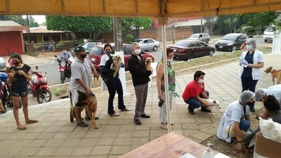 Coronel Oviedo: Realizan jornada de vacunación a peluditos para prevenir la rabia